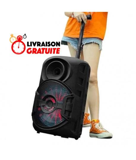 Haut Parleur Bluetooth - MP3 - Radio FM 20W - ZQS-12106
