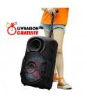 Haut Parleur Bluetooth - MP3 - Radio FM 30W - ZQS-12106
