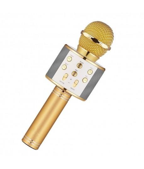 Microphone Karaoké KTV WS-858